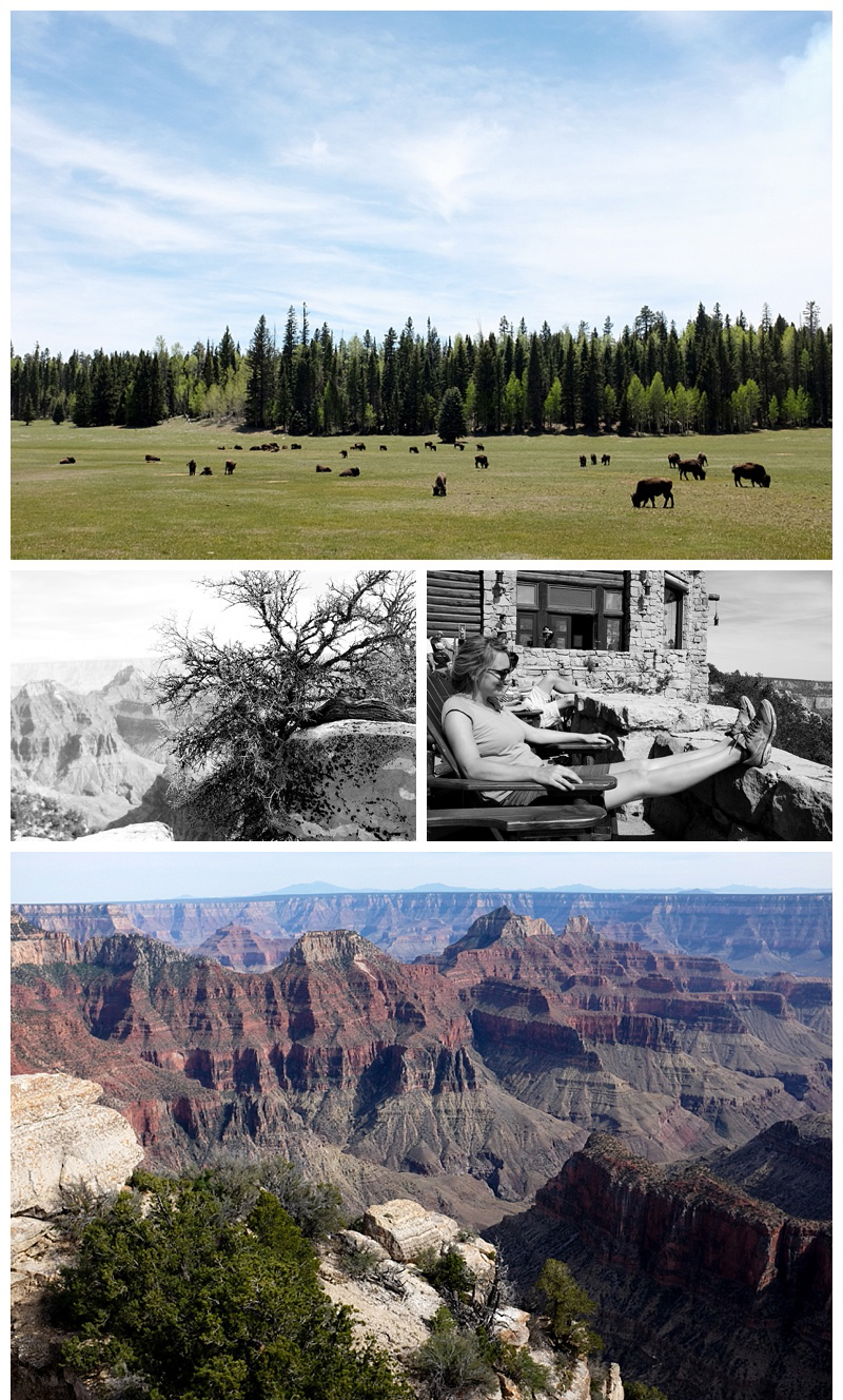 Grand_Canyon_Sante_Fe_USA_Road_Trip_0015